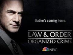 Сериал «Закон и порядок: организованная преступность»: содержание всех серий
